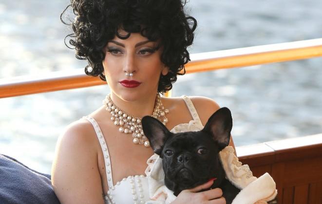 Lady-Gaga-Bulldog-Asia-